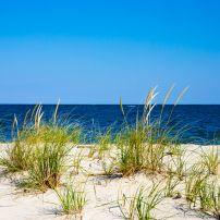 Shoreline, Chesapeake Bay, Flag Ponds Nature Park, Calvery County, Maryland