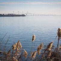 Chesapeake Bay Bridge, Stevensville, Maryland