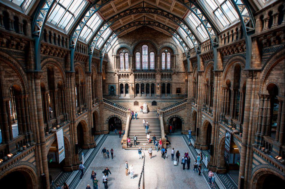 Natural History Museum, Kensington, London, England.
