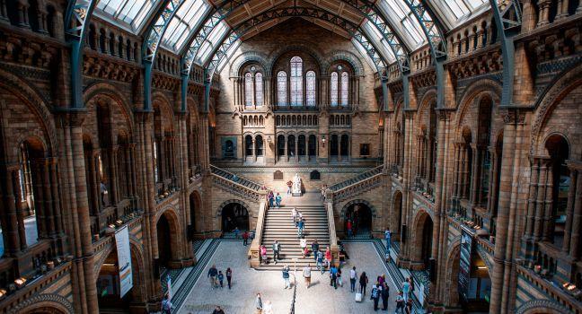 Natural History Museum, Kensington, London, England.