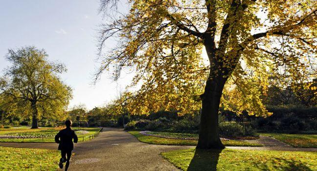 Runner, Hyde Park, London, England