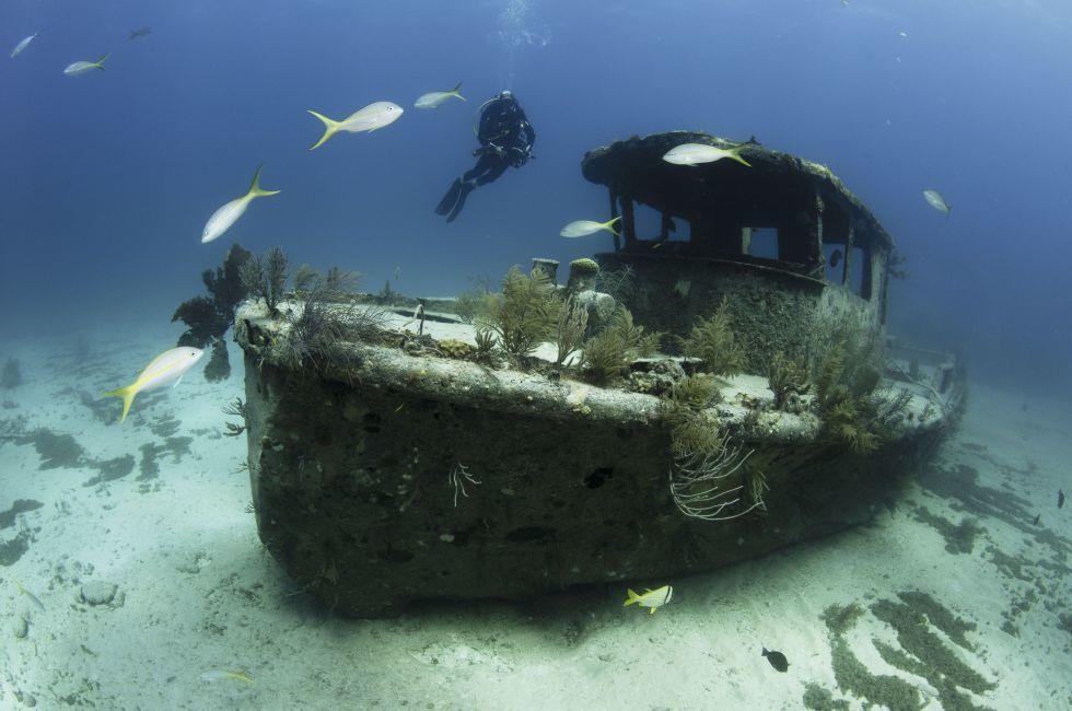 Scuba Diver, Shipwreck, Grand Bahama, The Bahamas, Caribbean