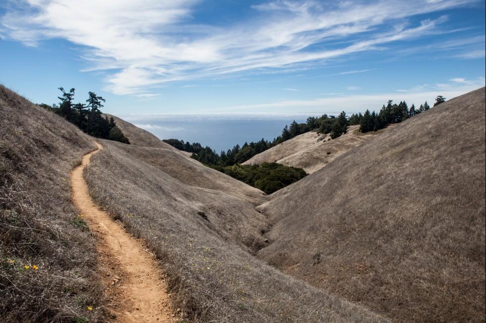Trail, Mount Tamalpais, Mount Tamalpais State Park, California, USA
