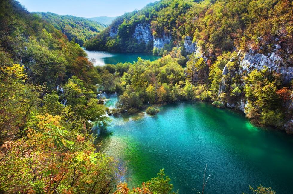 Lake, Forest, Plitvice Lakes, Croatia