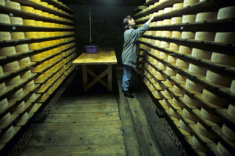 Cheese Cellar, Gruyere, Fribourg and Neuchatel, Switzerland