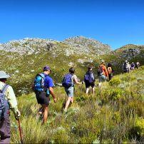 Hikers, Pieke, Jonkershoek Nature Reserve, Western Cape, South Africa