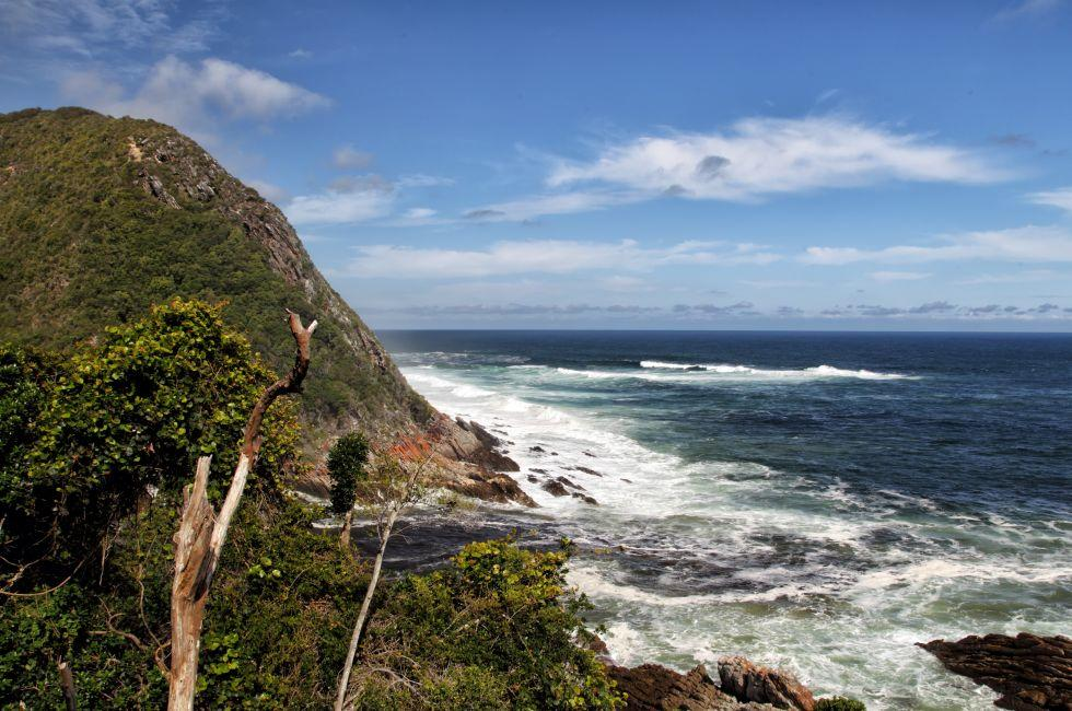 Coast, Tsitsikamma National Park, South Africa
