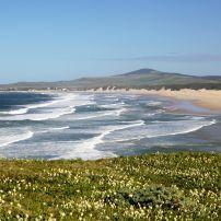 Beach, Boknes, Sunshine Coast, Eastern Cape, South Africa