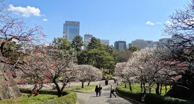 Imperial Palace East Garden Review