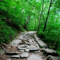 Path, Valley Green, Wissahickon Park, Philadelphia, Pennsylvania, USA