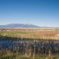 Alamosa National Wildlife Refuge, Colorado