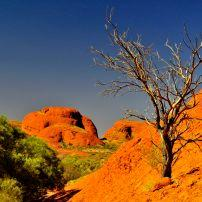 Red Centre, The Outback, Australia.