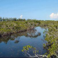 Lucayan National Park, Grand Bahama Island, The Bahamas, Caribbean
