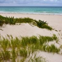 Beach, Playa Maroma, Caribbean Coast, Mexico