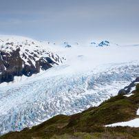 Harding Icefield Trail, Kenai Fjords National Park, The Kenai Peninsula, Alaska, USA, North America