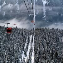 Gondola, Forest, Whistler, British Columbia, Canada