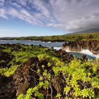 Coast, Waianapanapa State Park, Maui, Hawaii, USA