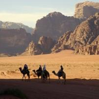 Camel Trek, Wadi Rum