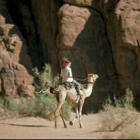 Camel Trek, Bedouin Encampment, Wadi Rum, Petra, Jordan