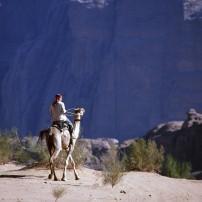 Camel Trek, Wadi Rum, Petra, Jordan