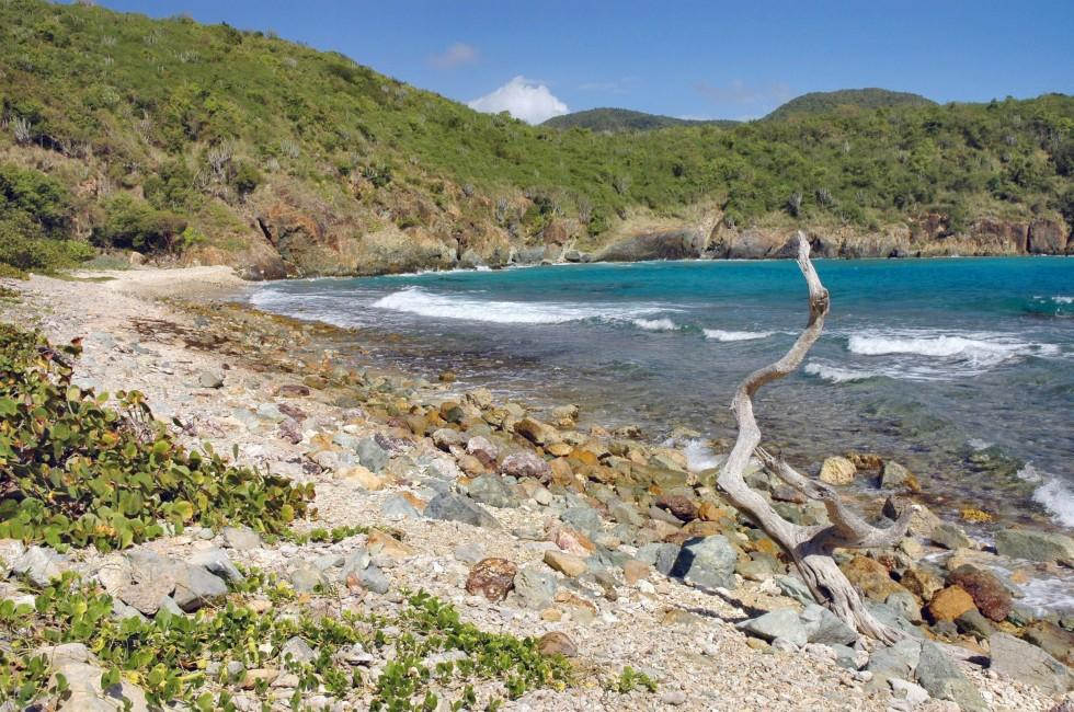 Beach, Reef Bay, Mid Island, St. John, USVI