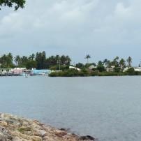 Rocky Coast, Conch Key, The Florida Keys, Florida, USA
