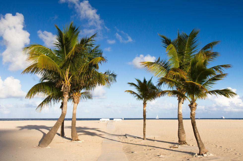 Palms, Seaside, Fort Lauderdale Beach, Fort Lauderdale, Florida, USA