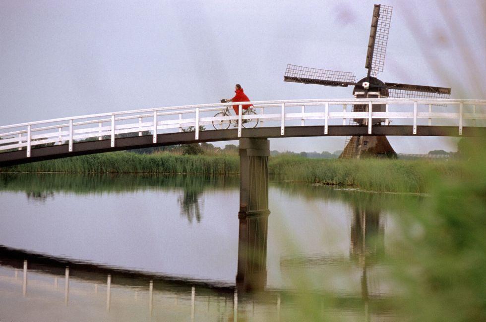 Biking through Holland