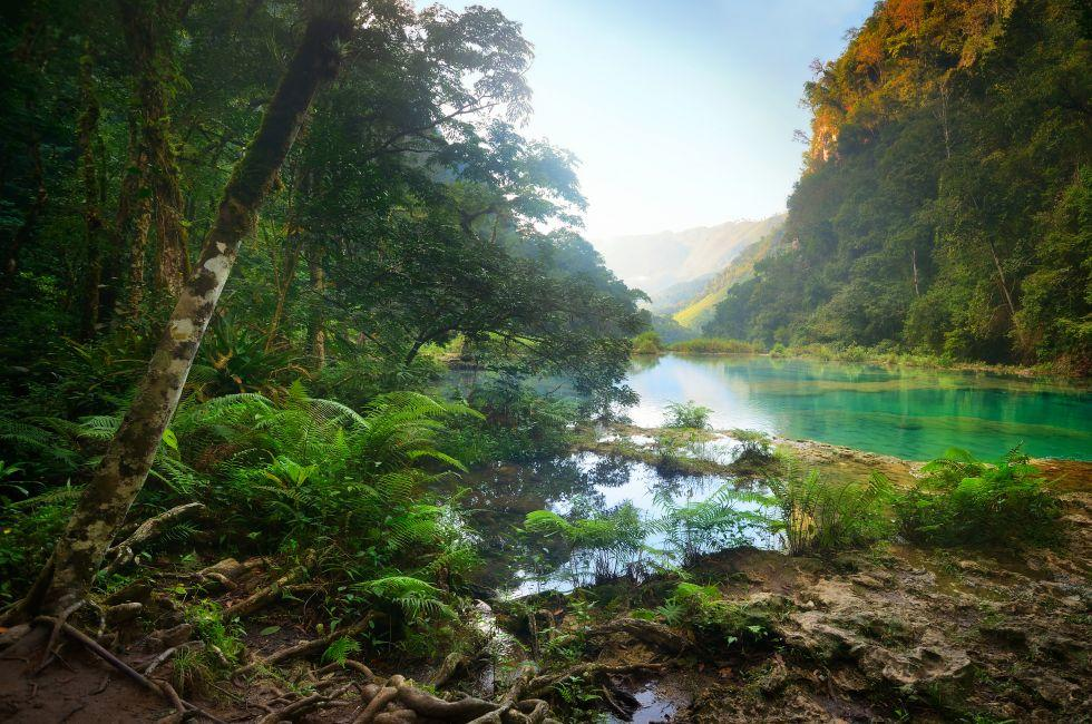 Rain Forest, National Park, Guatemala Semuc Champey