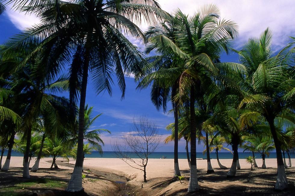 Beach, Tela, Honduras