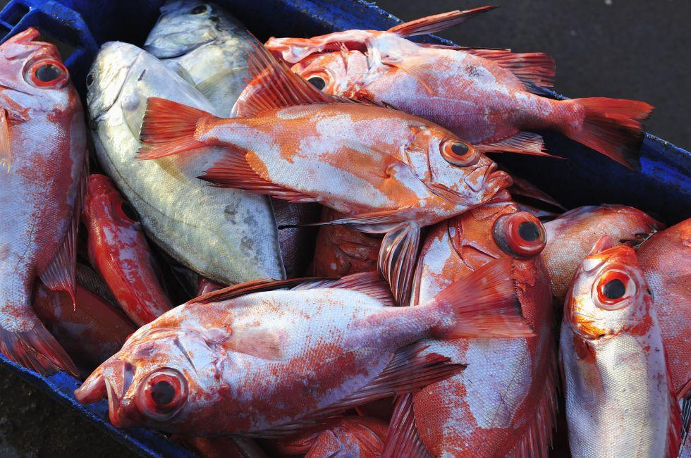 Fish, Market, Easter Island, Chile