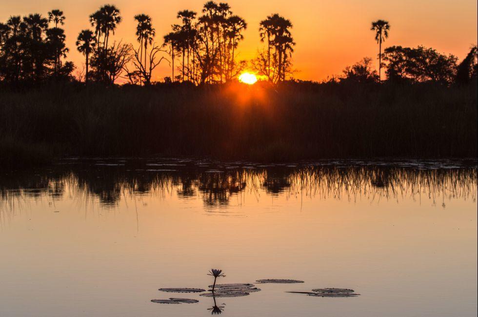 Sunset, Okavango Delta, Maun, Botswana