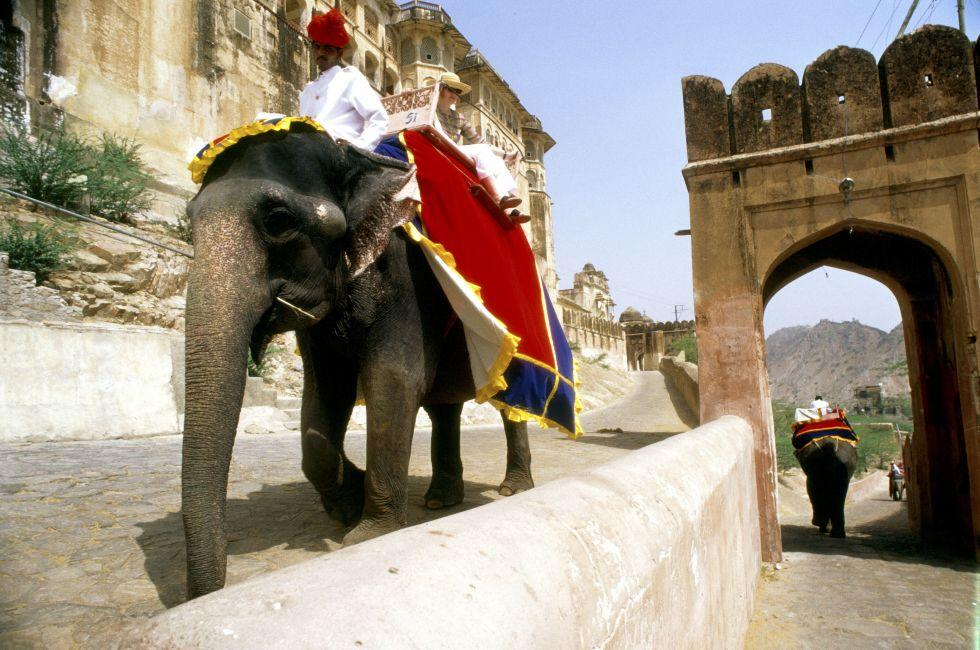 Shuttling on Elephants to Amber Fort, Jaipur