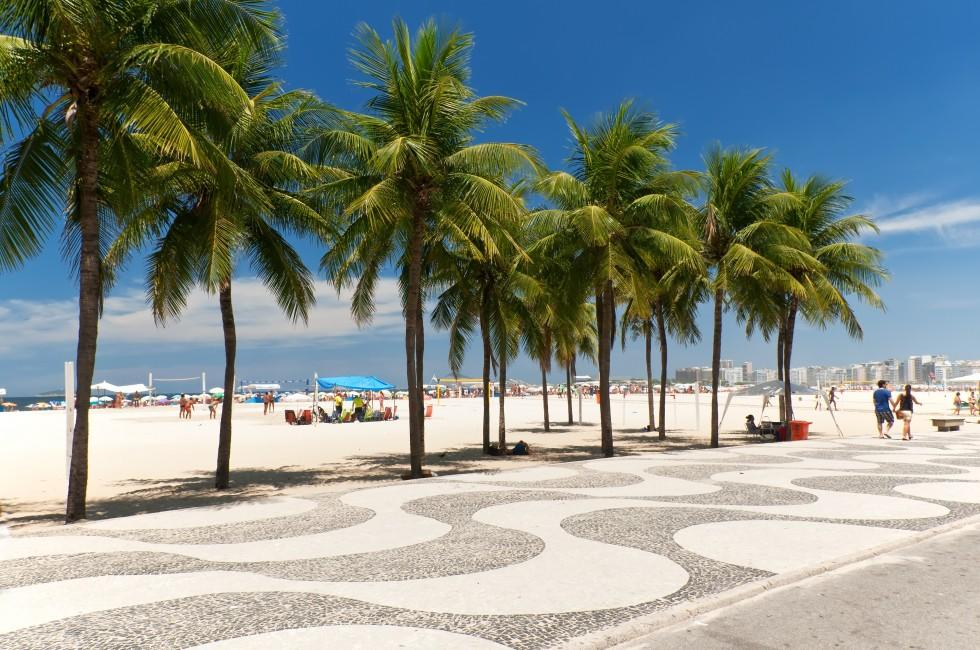Palm trees, sidewalk, Copacabana beach, Rio de Janeiro, Brazil