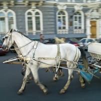 Carriage, Ukraine, Odessa