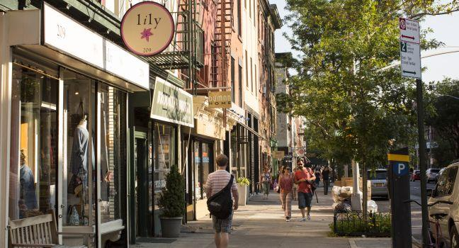 Image result for cobble hill brooklyn images