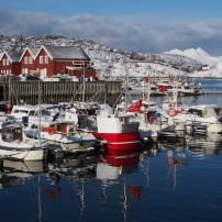 Boats, Port, Bodo, Norway