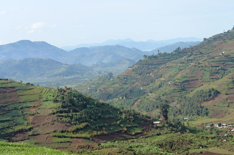 Virunga Mountains, Uganda, Africa