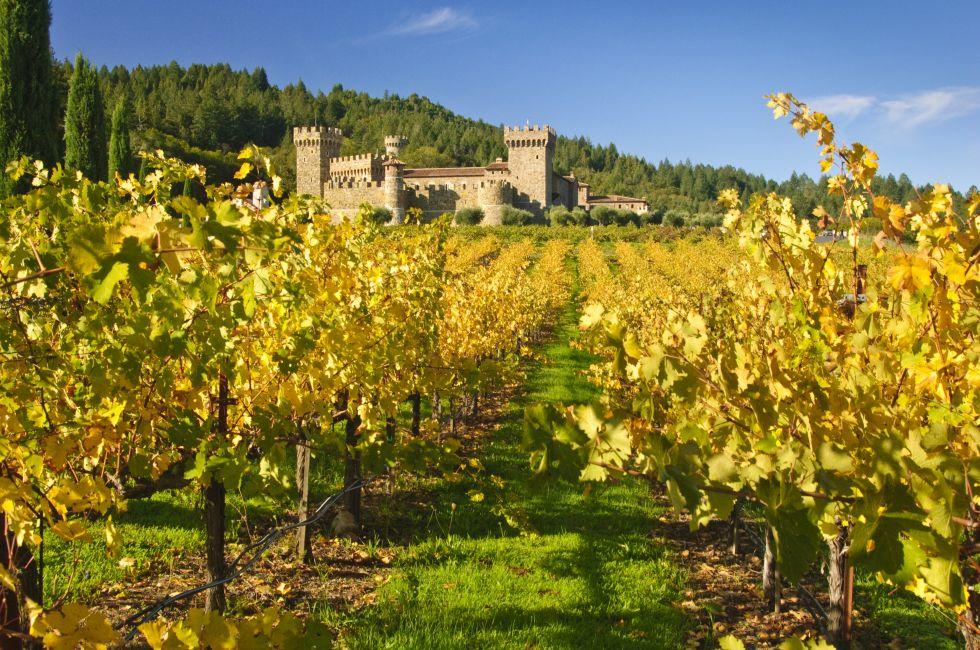 Castello di Amorosa, Vineyard, Napa Valley, California
