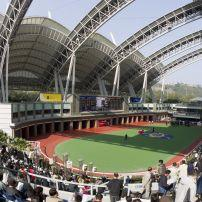 Sha Tin Racecourse, Hong Kong