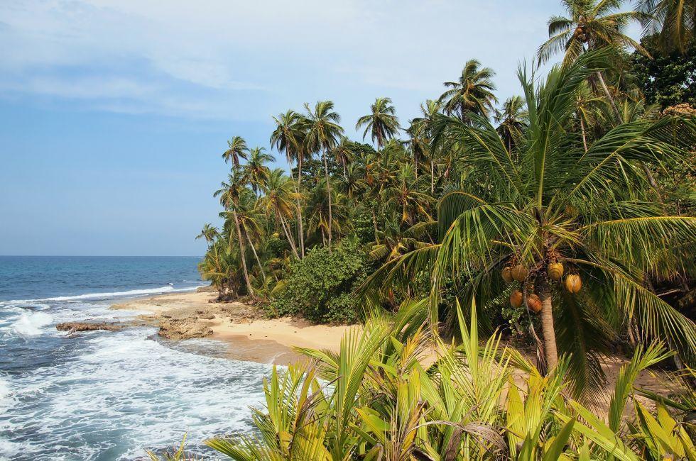 Beach, Gandoca Manzanillo, Costa Rica