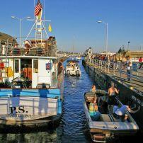 Ballard Locks, Ballard, Seattle, Washington, USA