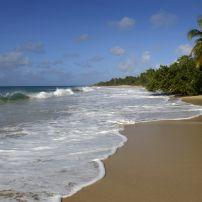 Beach, Les Salines, Sainte Anne, Martinique, France