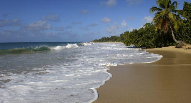 Beach, Les Salines, Sainte Anne, Martinique, France