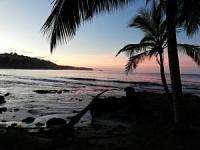 Volunteering for the Jaguar Rescue Centre in Costa Rica-img_20181124_171857-300x225.jpg