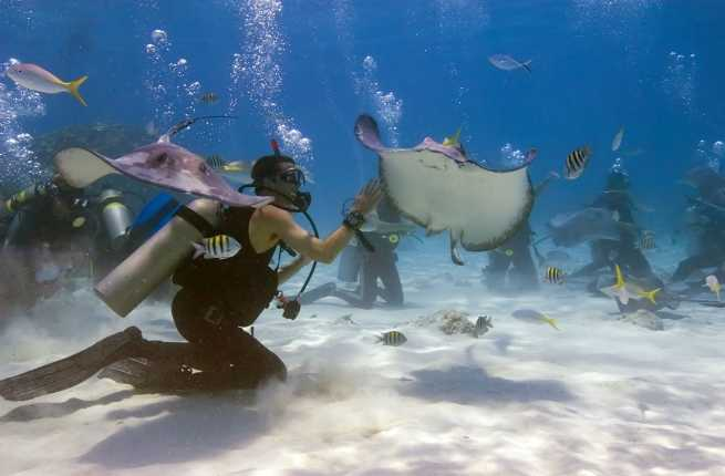 5 Must-Have Experiences on Grand Cayman Island