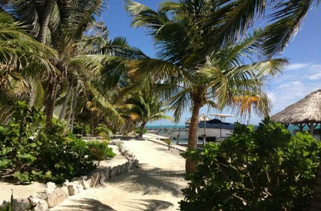 From Caye to Cayo: Top 4 Experiences in Belize