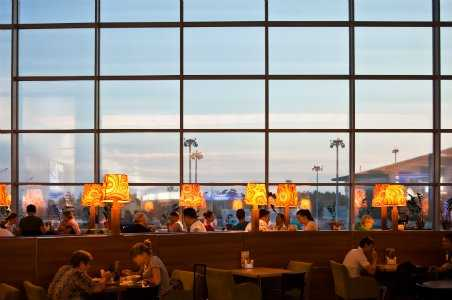 4 Best Vegan-Friendly US Airport Terminals