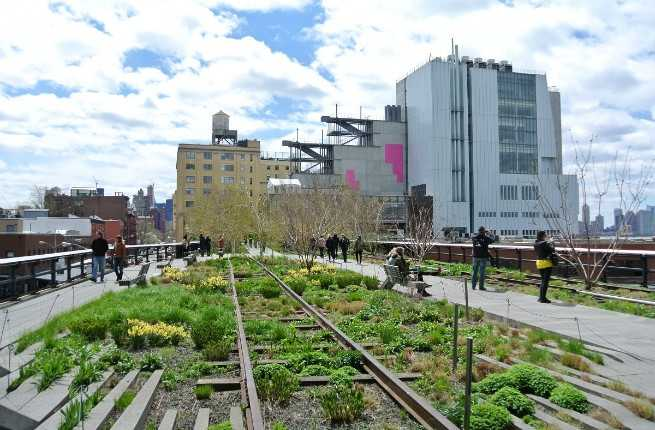 The Ultimate Guide to the High Line