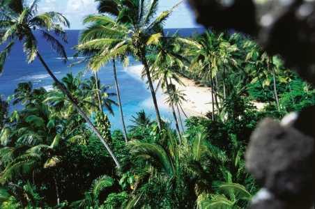 beginners-guide-to-hawaii-kauai-hero.jpg